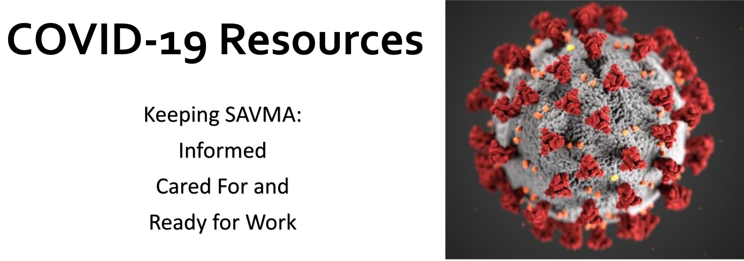 Header for COVID-19 Resources Page, featuring photo of coronavirus